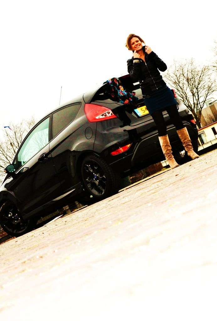 Ford Fiesta Metal #2