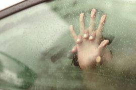 car-masutra, seks in de auto